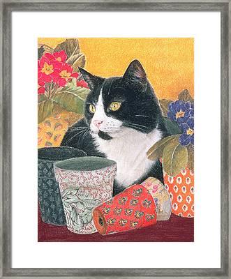 Bhajii And Flowerpots Framed Print by Judy Joel