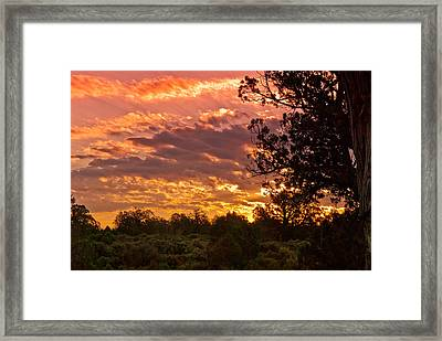 Canyon Dechelly Sunset In Copper And Gold Framed Print by Bob and Nadine Johnston