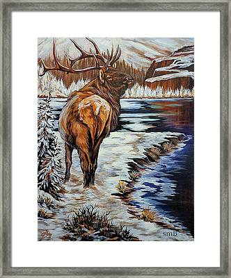 Colorado Winter Framed Print by Susan Bergstrom
