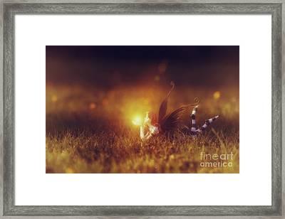 Faerie Light  Framed Print by Tim Gainey