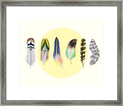 Feathers 2 Framed Print by Mark Ashkenazi