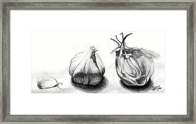 Garlic Drawing Framed Print by Afif Nor
