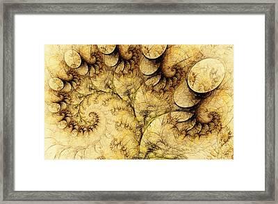 Idea Of A Tree Framed Print by Anastasiya Malakhova
