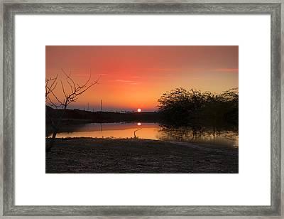 Meitar Framed Print by Mark Ashkenazi