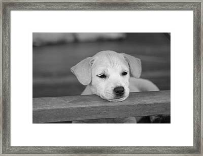 It Was A Hard Day Framed Print by Michelle Meenawong
