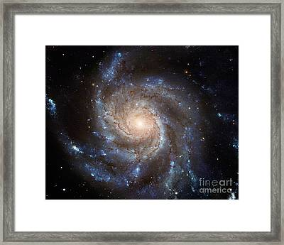 Messier 101 Framed Print by Barbara McMahon