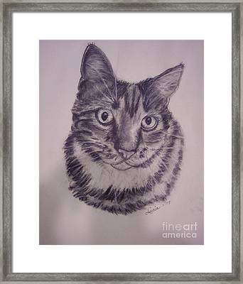 Pet Portraits  Framed Print by Lucia Grilletto
