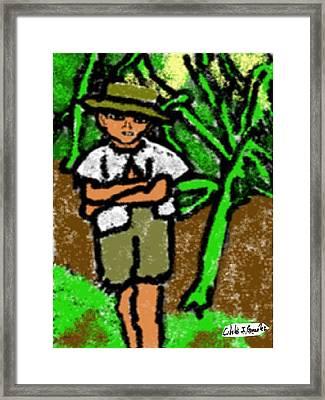 Puerto Rican Boy In Sugarcane Field Framed Print by Cibeles Gonzalez