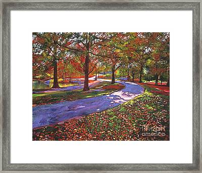 Road By The Lake Framed Print by David Lloyd Glover