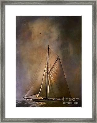 Shamrock II -1901  Framed Print by Andrzej Szczerski