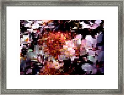 Smokebush Abstract Framed Print by Rosemarie E Seppala