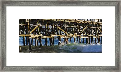 Surfer Dude 5 Framed Print by Scott Campbell