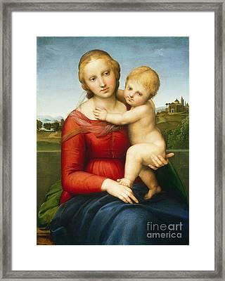 The Small Cowper Madonna Framed Print by Raphael Raffaello Sanzio of Urbino