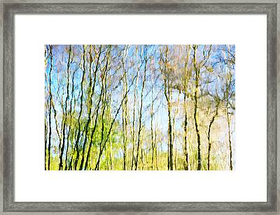 Tree Reflections Abstract Framed Print by Natalie Kinnear