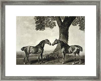 Two Hunters  Framed Print by GT Stubbs