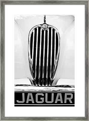 1955 Jaguar Grille Emblem Framed Print by Jill Reger