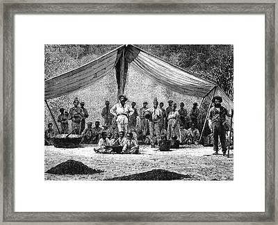 19th Century Coffee Farmers Framed Print by Collection Abecasis