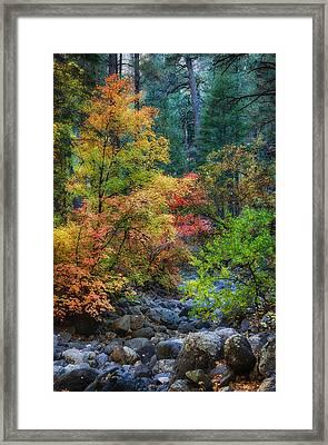A Beautiful Fall Day  Framed Print by Saija  Lehtonen