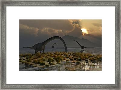 A Herd Of Omeisaurus Sauropod Dinosaurs Framed Print by Mark Stevenson