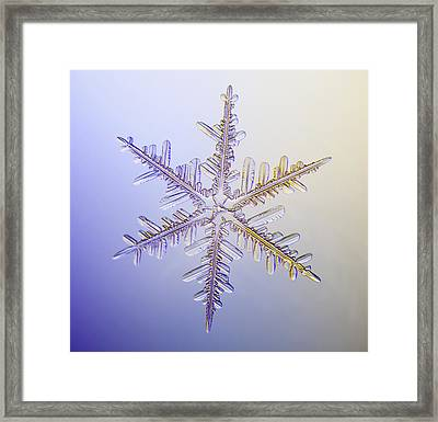 A Real Snowflake Showing The Classic Framed Print by Marion Owen