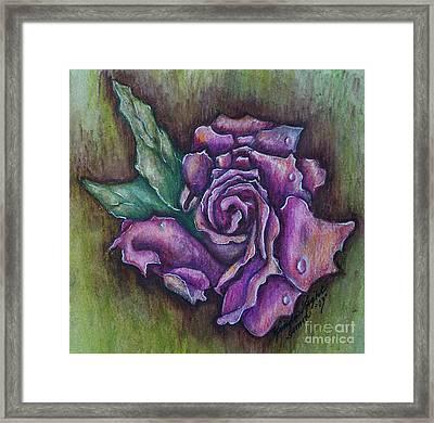 A Rose    Framed Print by Linda Simon