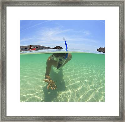A Young Man Snorkels Holding A Starfish Framed Print by Stuart Westmorland