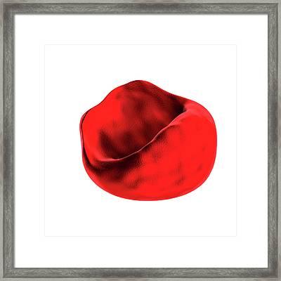 Abnormal Red Blood Cell Framed Print by Harvinder Singh