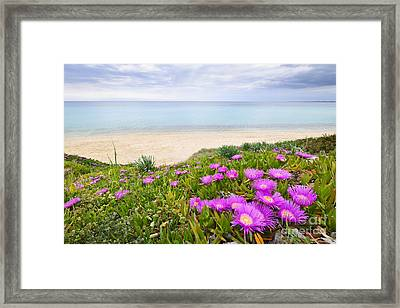 Aegean Sea Coast In Greece Framed Print by Elena Elisseeva