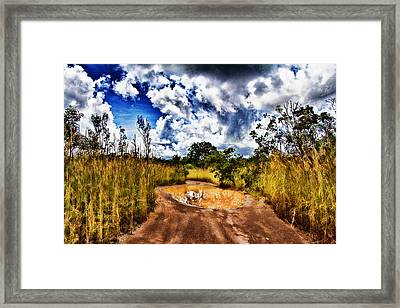 After The Rain Framed Print by Douglas Barnard