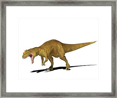 Allosaurus Dinosaur Framed Print by Friedrich Saurer