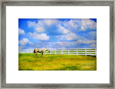 Alone Framed Print by Darren Fisher