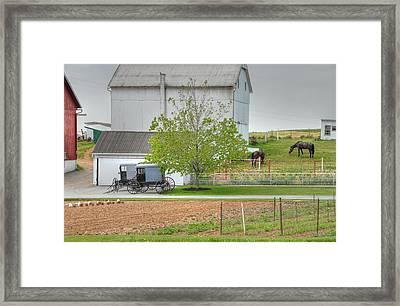An Amish Farm Framed Print by Dyle   Warren