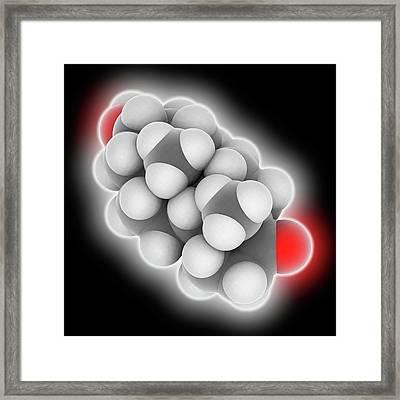 Androsterone Hormone Molecule Framed Print by Laguna Design