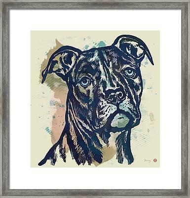 Animal Pop Art Etching Poster - Dog - 4 Framed Print by Kim Wang