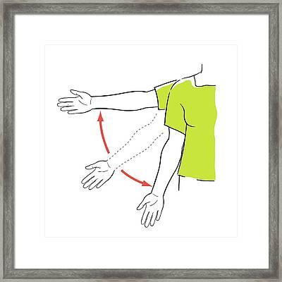 Arm Exercises Framed Print by Jeanette Engqvist