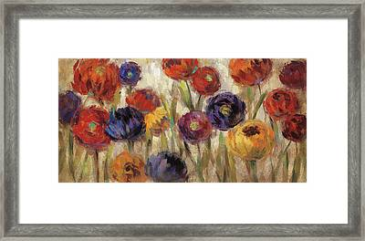 Asters And Mums Framed Print by Silvia Vassileva