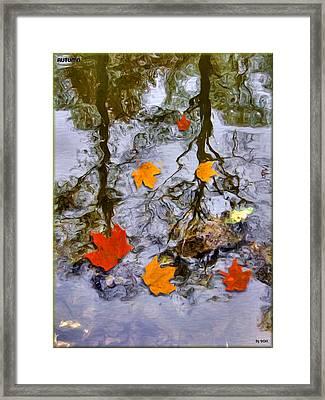 Autumn Framed Print by Daniel Janda