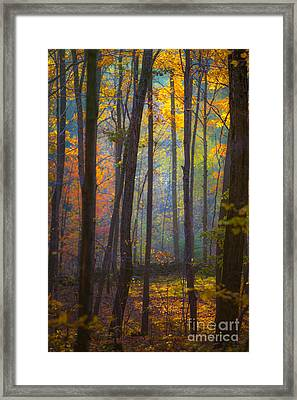 Autumn In Connecticut Framed Print by Diane Diederich