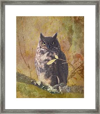 Autumn Owl Framed Print by Angie Vogel