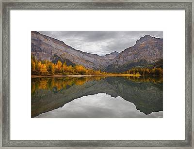 Autumn Reflections Framed Print by Dominique Dubied