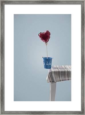 Balanced Framed Print by Joana Kruse