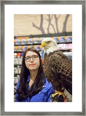 Bald Eagle With Handler Framed Print by Jim West