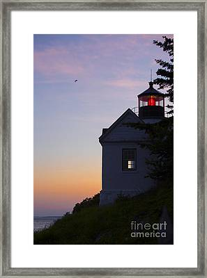 Bass Harbor Lighthouse Framed Print by Diane Diederich