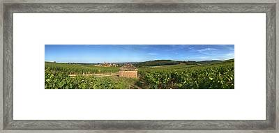 Beaujolais Vineyard, Saules Framed Print by Panoramic Images