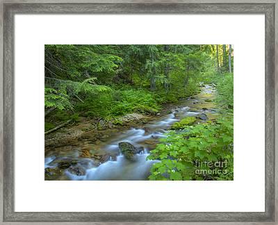 Big Creek Framed Print by Idaho Scenic Images Linda Lantzy