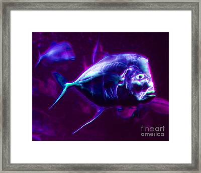 Big Fish Small Fish - Electric Framed Print by Wingsdomain Art and Photography