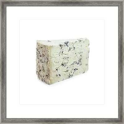 Blue Cheese Framed Print by Science Photo Library