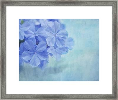 Blue Fantasy Framed Print by Kim Hojnacki