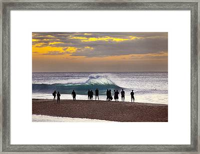 Blue Marlin Framed Print by Sean Davey