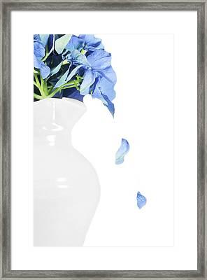 Blue Tears Framed Print by Diana Angstadt